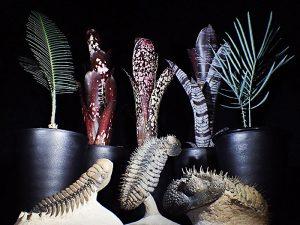 観葉植物、化石、植物